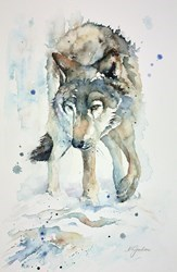 Lone Timber Wolf by Amanda Gordon -  sized 12x19 inches. Available from Whitewall Galleries